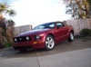 Mike's Mustang